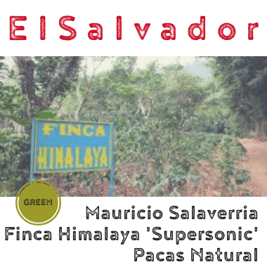 El Salvador Mauricio Salaverria Supersonic Pacas Natural 2019 (green)-0